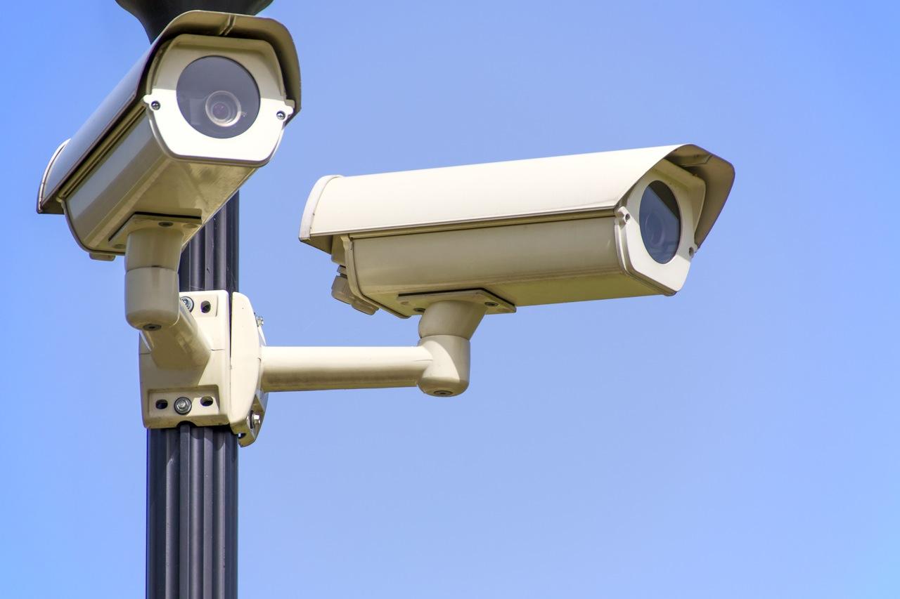 The Private Investigator Auckland Services Guide